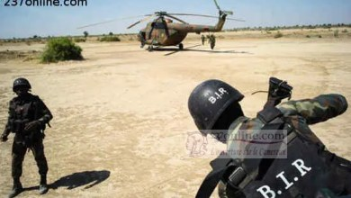 Photo of Cameroun: L'armée camerounaise libère sept otages dans le nord