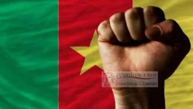Photo of Cameroun: Plus de 50 % de Camerounais favorables au fédéralisme