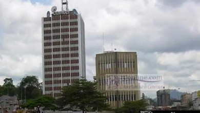 Photo of Cameroun: Camtel va fournir l'Internet à haut débit au Brésil et au Nigeria