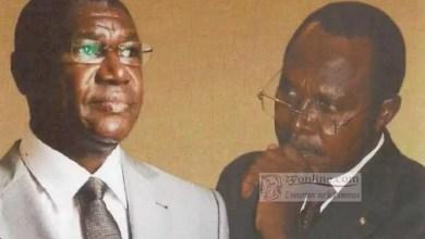 Photo of Cameroun : le Pr. Shanda Tonme publie un livre sur l'affaire Yves Michel Fotso