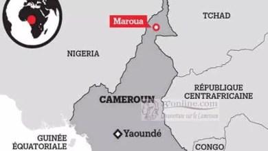 Photo de Cameroun – CEP : Deux directeurs d'écoles interpelés pour détournement à l'Extrême-Nord