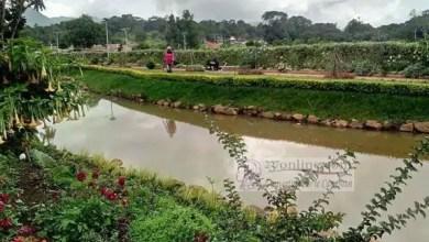 Photo of Cameroun: Biopharma bâtit un complexe touristique à 2 milliards de FCFA à l'Ouest