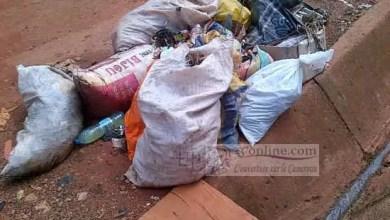 Photo of Cameroun : Trois nouvelles entreprises d'hygiène rivalisent avec Hysacam à Douala