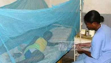 Photo of Cameroun – Santé publique: Le paludisme a tué plus de 3200 personnes au Cameroun en 2018