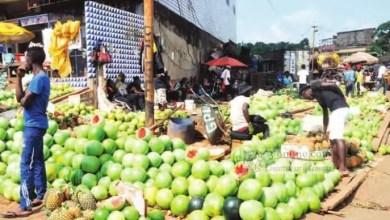 Photo of Cameroun : La pastèque toujours chère à Bafoussam