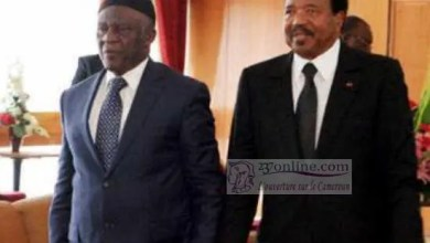 Photo of Cameroun – Crise anglophone : Le Sdf accuse le gouvernement