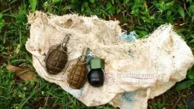 Photo of Extrême-Nord Cameroun : 5 enfants brûlés par une grenade