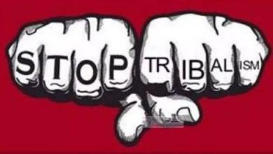 Photo of Cameroun – Tribalisme : Les guéguerres se multiplient sur la toile