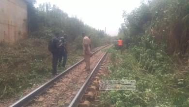 Photo de Camrail accompagne riverains dans le cadre du désherbage de la voie férée