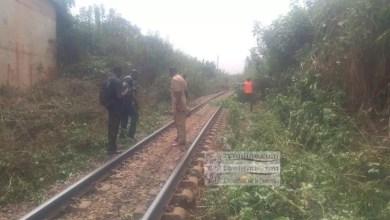 Photo of Entretien des voies ferrées : CAMRAIL lance les opérations de désherbage