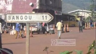 Photo of Cameroun : le citron, trésor de Bangou