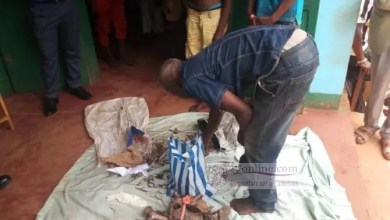 Photo of Cameroun : Découverte d'une cargaison d'ossements humains estimée à 50 millions de FCFA