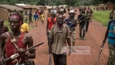 Photo of Cameroon – Anglophone Crisis: SDO Says Some Amba Boys From Mbonge Have Surrendered, Urges Others To Cue In