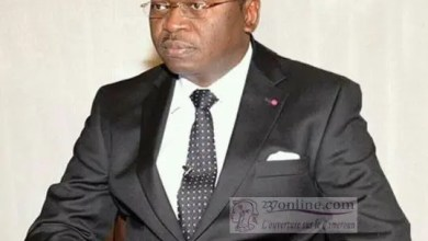 Photo of Cameroun: L'infatigable serviteur Ferdinand Ngoh Ngoh