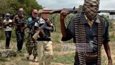 Photo of Cameroun: 6 militaires tués dans une attaque de Boko Haram dans l'extrême Nord