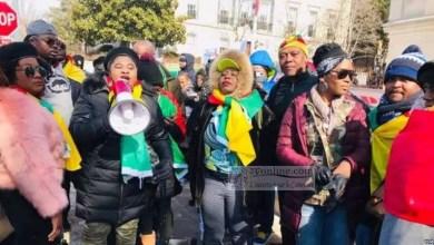 Photo of La diaspora du Cameroun est-elle la plus nulle d'Afrique ?
