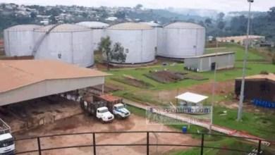 Photo of Cameroun/transport urbain : Le mouvement d'humeur annoncé ce lundi 20 avril annulé