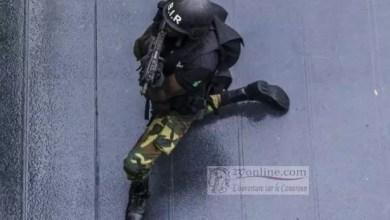 Photo of BIR: L'unité d'élite pour la sécurité au Cameroun