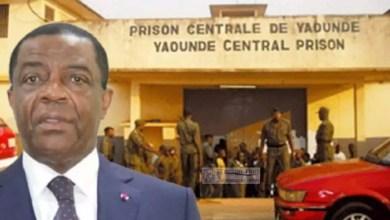 Photo of Déstabilisation du Cameroun: Voici comment Mebe Ngo'o tient et manipule Maurice KAMTO