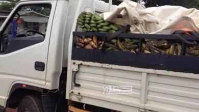 Photo of Corruption: Les gabonais chassés en cascade du marché d'Abang-Minko'o
