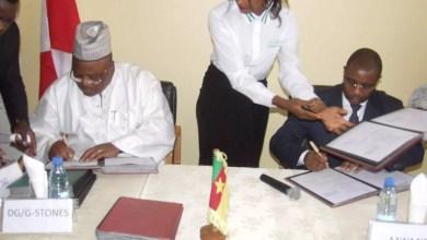 Photo of Cameroun : 900 milliards de  FCFA pour exploiter le fer d'Akom II