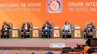 Photo de Paix et sécurité en Afrique : M. Tony Elumelu et S.EMackySall pour lacréation d'emplois et ladiversité desgenres