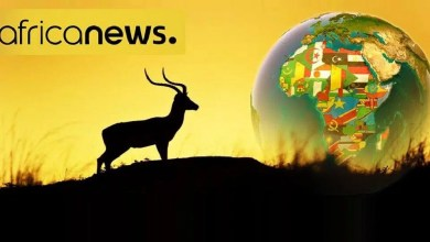 Photo of Télévision : Menaces de fermeture de la chaîne Africanews ?