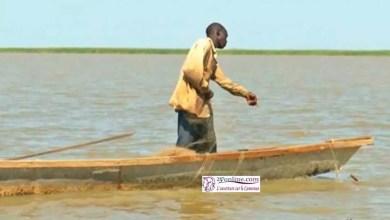 Photo de Cameroun: Une cinquantaine de pêcheurs égorgés par Boko Haram