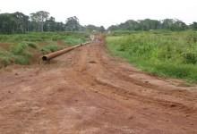 Photo of Cameroun: Accaparement des terres par les expatriés