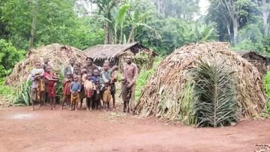 Photo of Cameroun: Les peuples autochtones résilients à la Covid-19