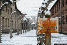 Photo of Survivors Visit Auschwitz A Day Ahead Of 70th Anniversary