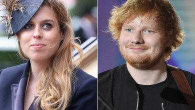 Photo of Princess Beatrice accidentally slices Ed Sheeran's face with a sword