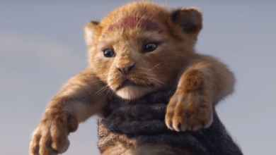Photo of First 'Lion King' Trailer Brings Simba Back to Big Screen