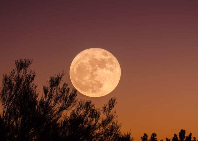 La «Super Lune des fleurs 2021» visible demain