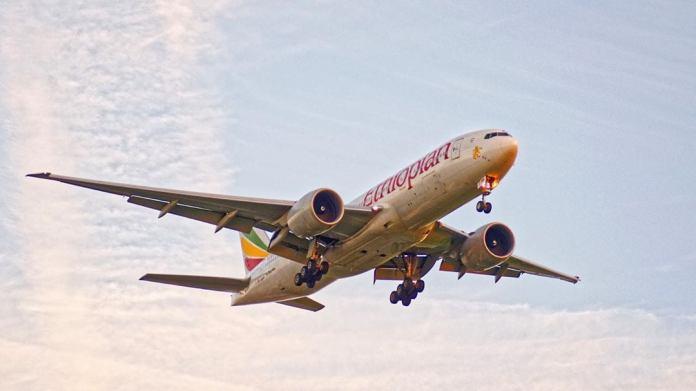 Ethiopian Airlines envisage d'ouvrir une ligne directe vers Alger