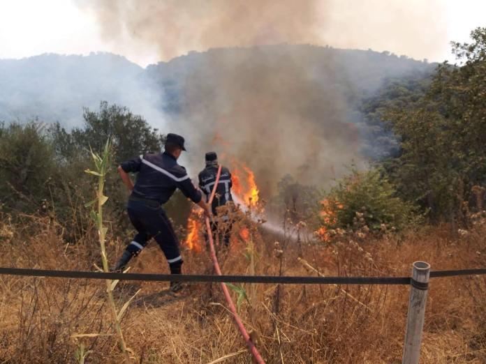 Protection civile: opération d'extinction de 92 incendies dans 16 wilayas