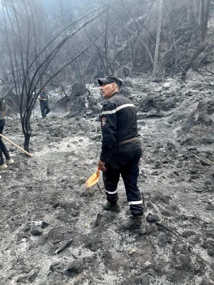 Feux de forêts: extinction de 41 feux dans 09 wilayas
