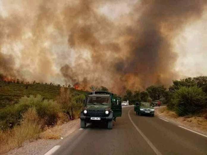 Ces catastrophes climatiques qui viennent