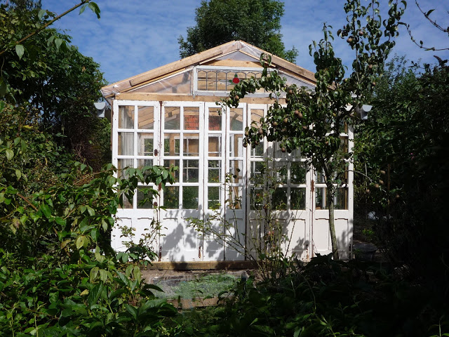 white greenhouse - Greenhouse Design Ideas