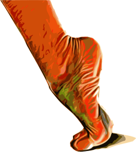 foot extensors