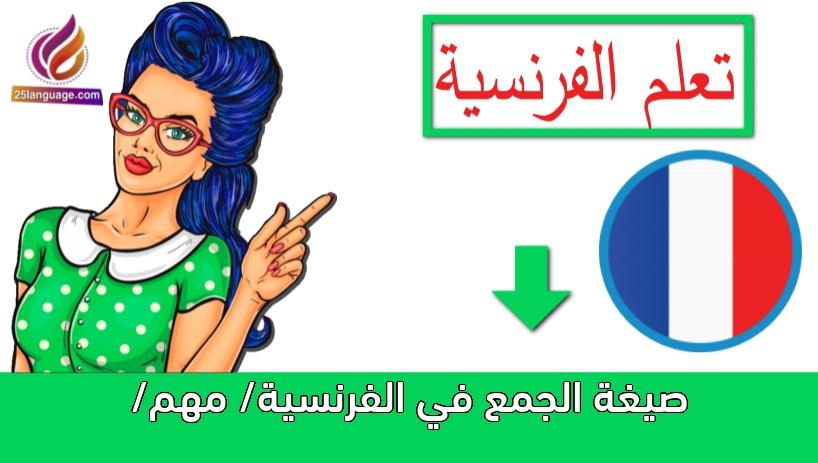 صيغة الجمع في الفرنسية/ مهم/