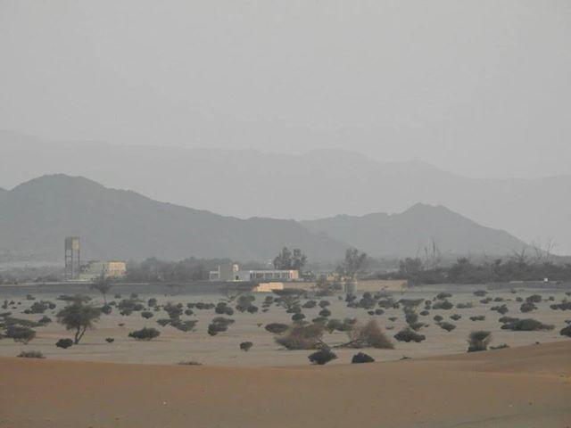 قتلى حوثيون بنيران الجيش وغارات جوية شرقي صعدة