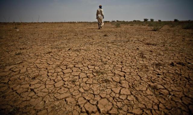 Effects Famine Somalia