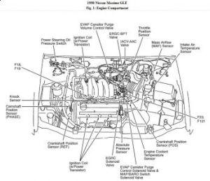 1998 Nissan maxima vacuum diagram