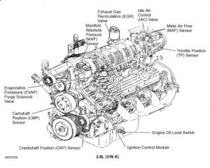 1997 Buick Park Avenue Egr Valve: Where Exactly Is It