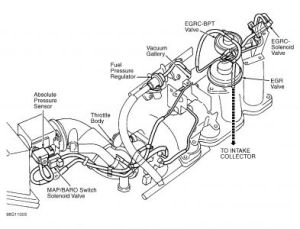 1998 Nissan Altima Vacuum Hoses: Hello I Just Changed the