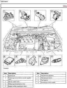 2002 Mercury Cougar EGR VALVE: I NEED TO KNOW HOW TO