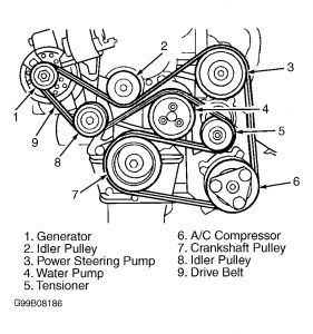1998 Ford Escort Locating Tension Pulley and Serpentine Bel