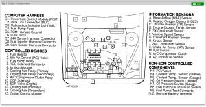 1995 Buick Century Location of Fuel Pump Fuse or Relay