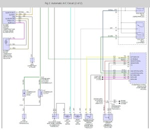 Wiring Diagram For 2000 Bonneville Ssei : 39 Wiring Diagram Images  Wiring Diagrams
